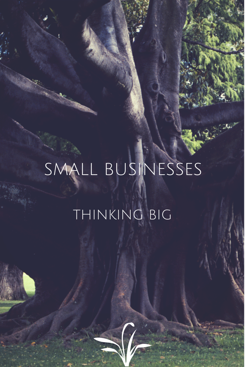 Small Businesses Thinking Big